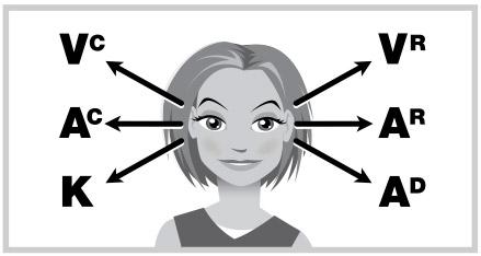 Antara si mata dan si hati ada koneksi via nlpinfo.com